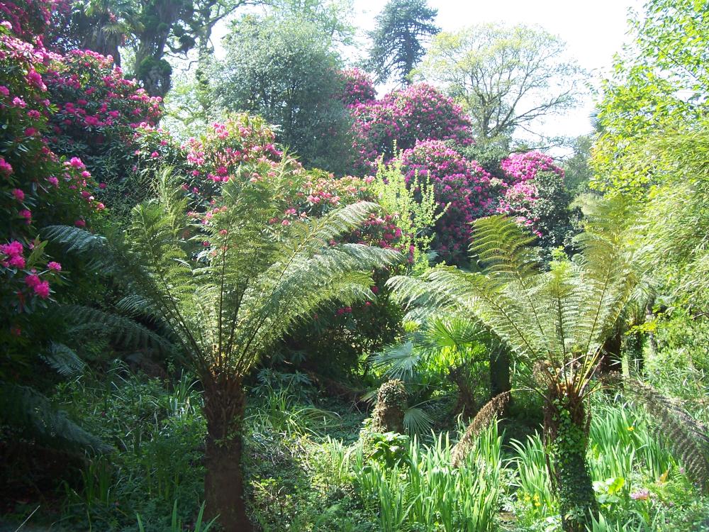 Lost Gardens of Heligan2